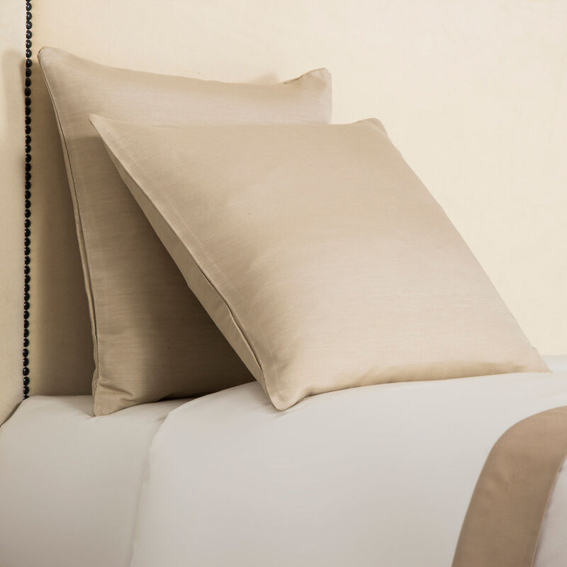 Luxury Passepartout Decorative Pillow
